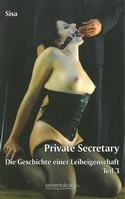 Private Secretary Teil 3
