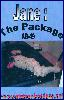 The Package - AB 49 (DVD)